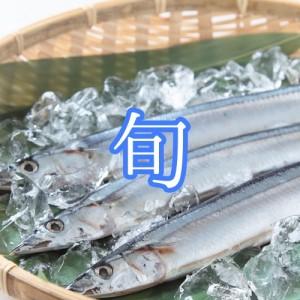 秋刀魚 サンマ 旬 北海道